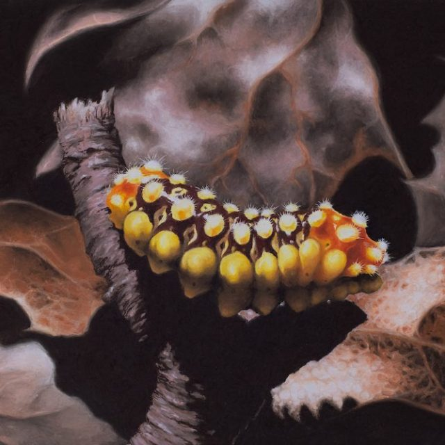 painting of a yellow and orange caterpillar on fall leaves